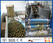 Clear / Cloudy Juice Pineapple Juice Extractor Machine , Pineapple Juice Making Machine