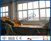 Energy Saving Orange Processing Line with Glass / PET Bottle Filling Machine
