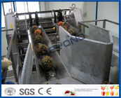 Stainless Steel Automatic CIP Cleaning Pineapple Processing Line with Aseptic Filling Machine
