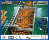 Full Automatic Engery saving Orange Processing Line for Turn Key Project