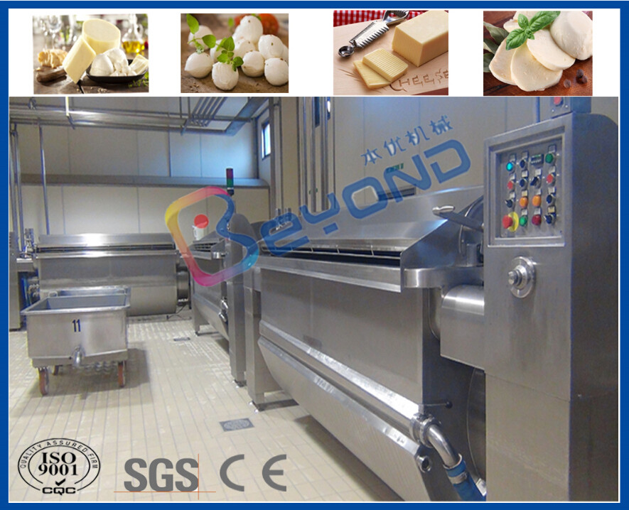 380V / 110V / 415V Industrial Cheese Making Equipment For Cheese Production Process